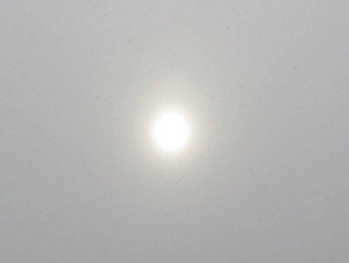 1. Dim Sun