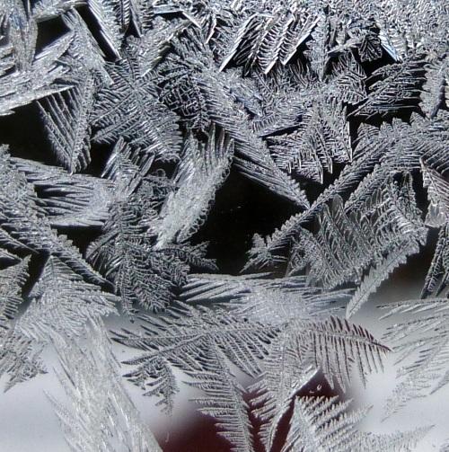 10. Window Frost