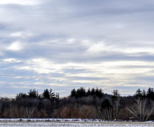 12. Winter Sky