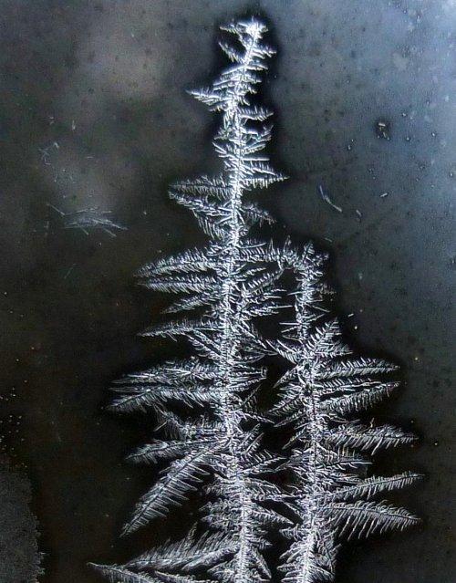 3. Window Frost
