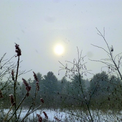 15. Sunny Snow Storm