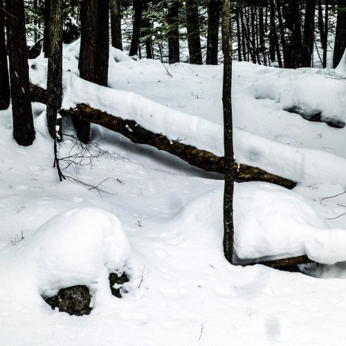 7. Snow Depth