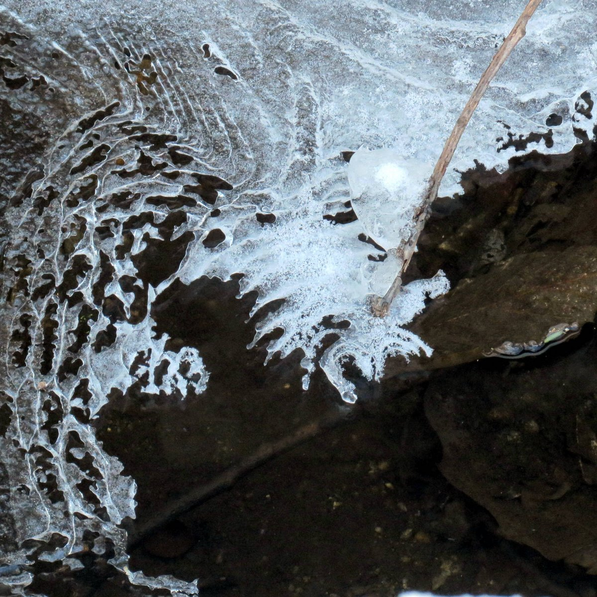 12. Ice in Drainage Ditch