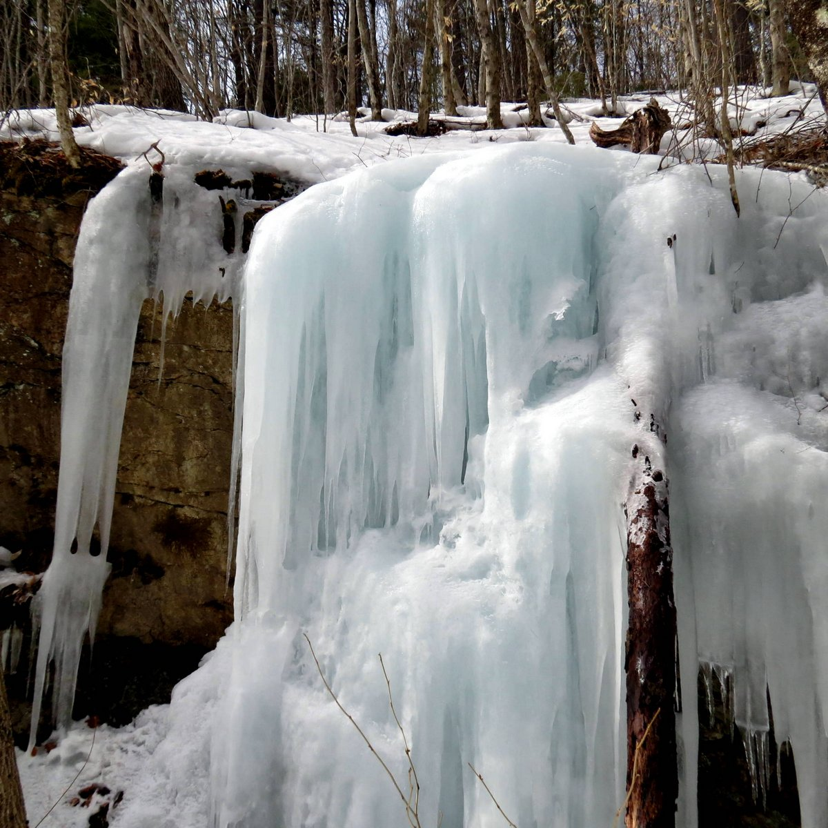6. Ledge Ice