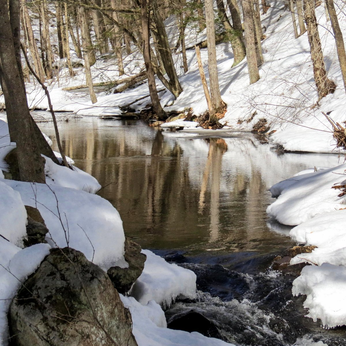 10. Ice Free Brook