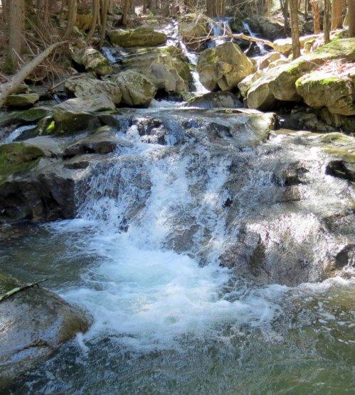 11. Lower 40 Foot Falls