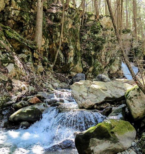 13. Upper 40 Foot Falls