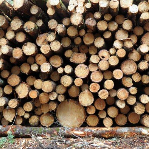 15. Log Pile