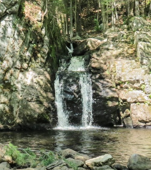 13. Falls