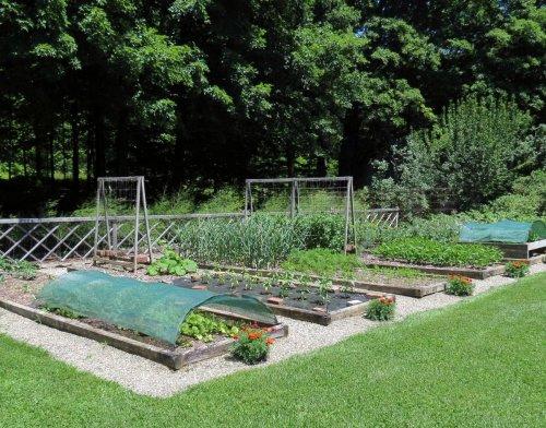 14. Vegetable Garden