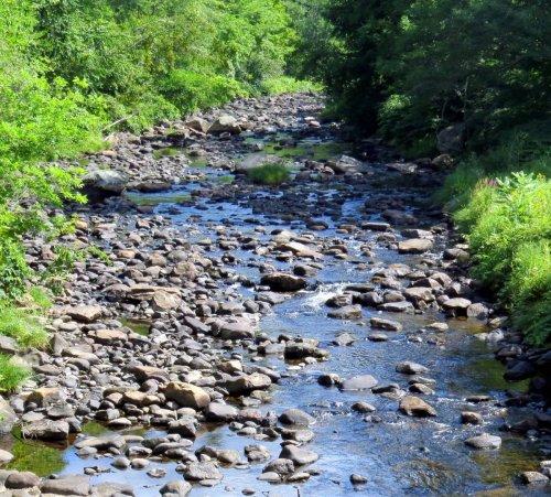 3. Branch River