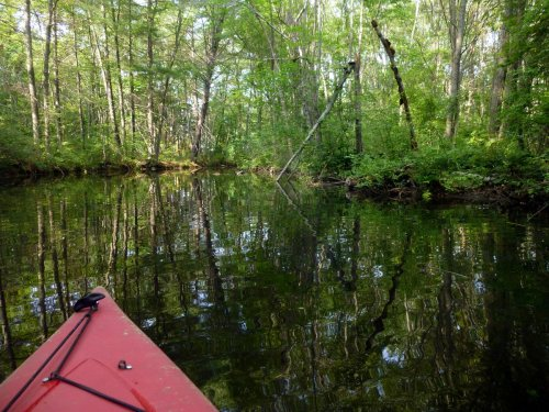 7. Pond View