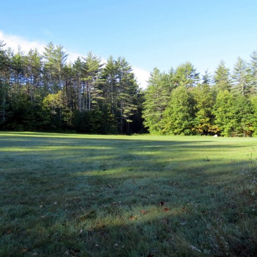 1. Field