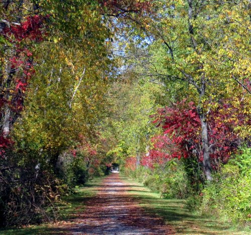 12. Rail Trail