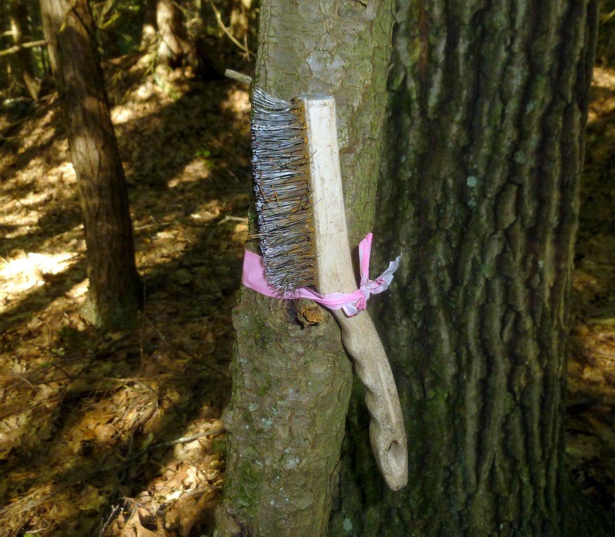13. Wire Brush