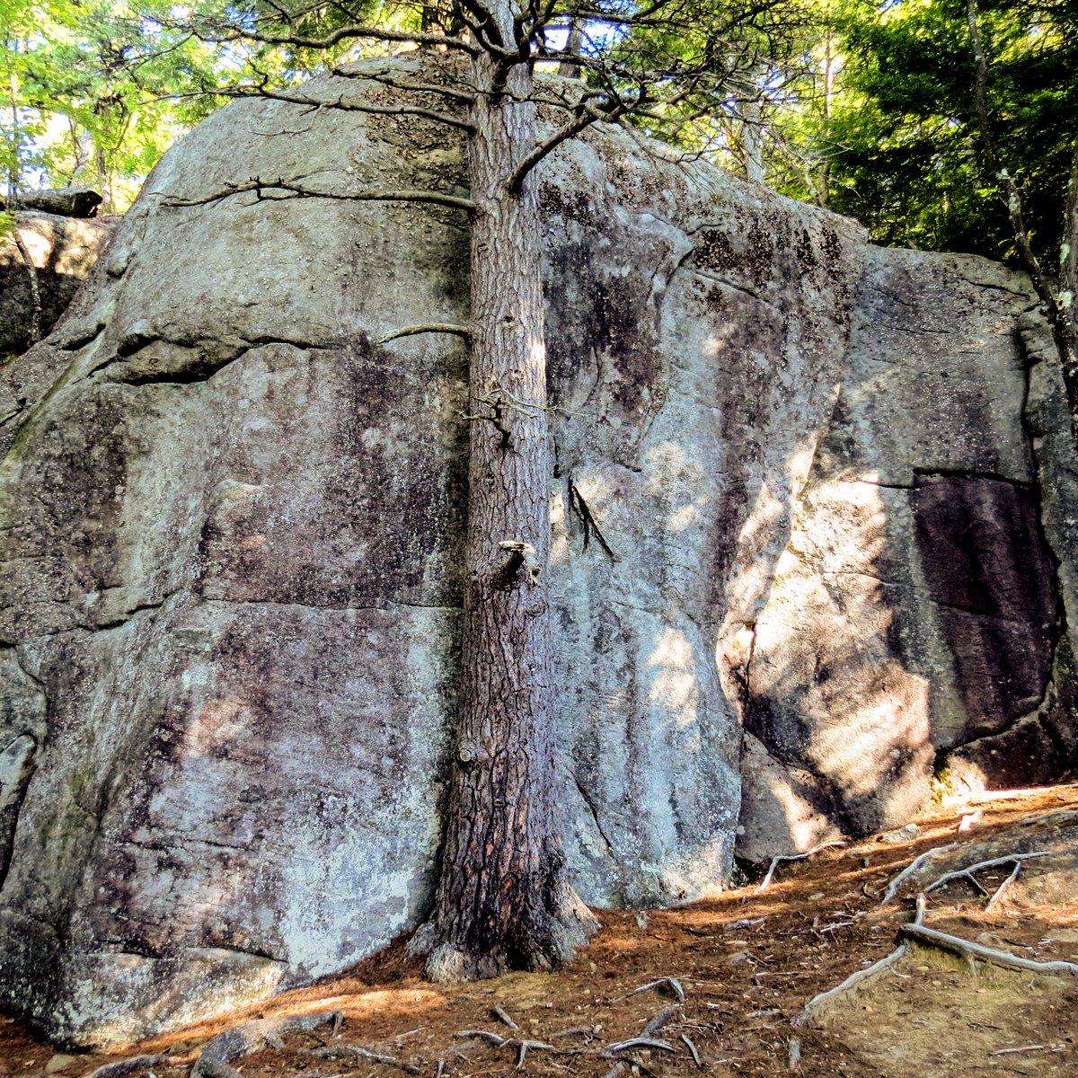 17. Rock Outcrop