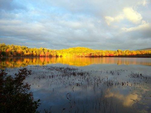 9. Half Moon Pond Sunrise