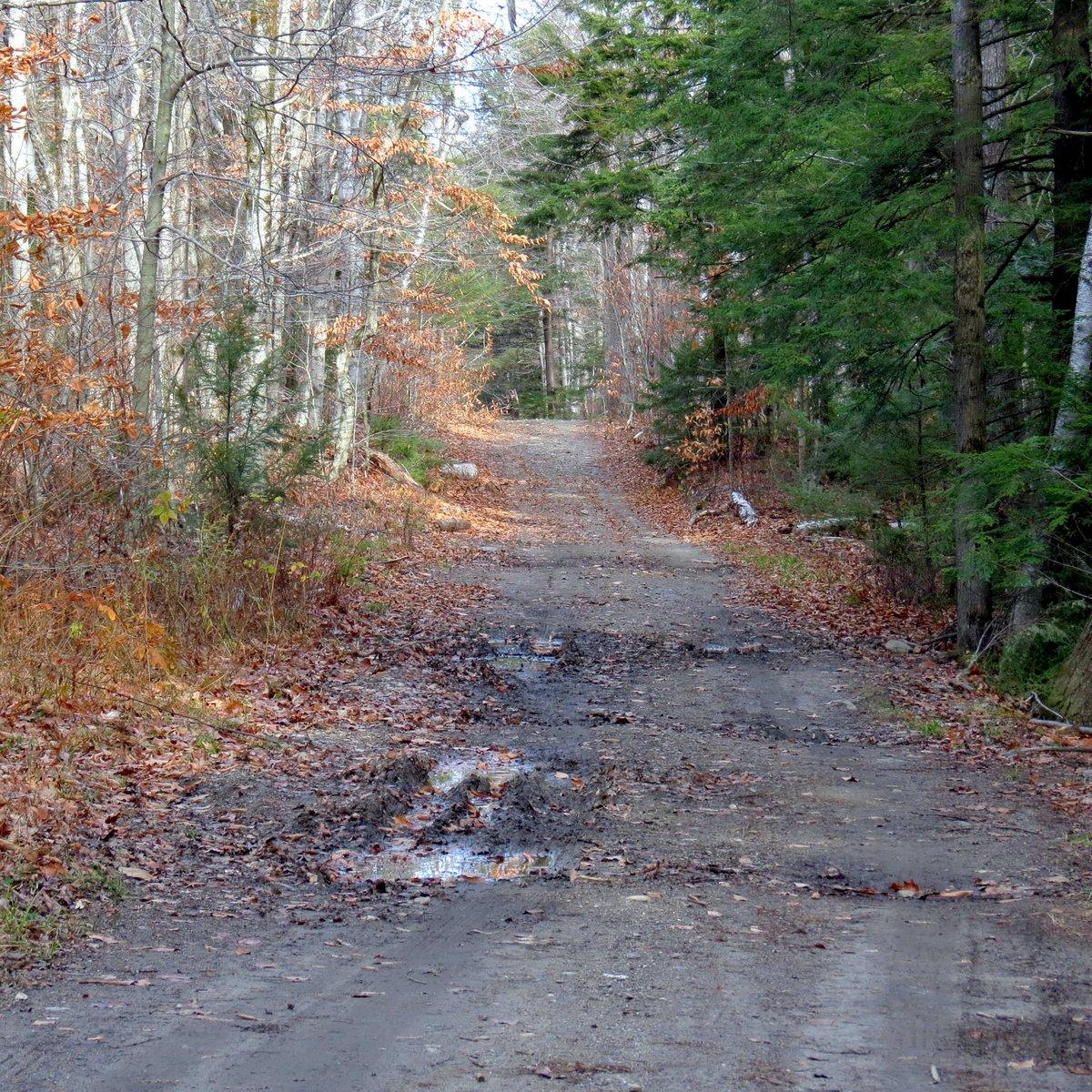 1. Road