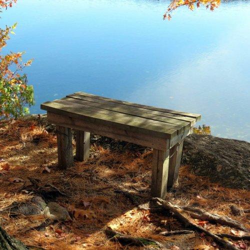 10. Bench