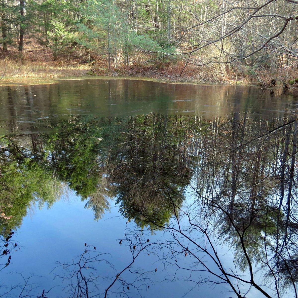 13. Pond Ice