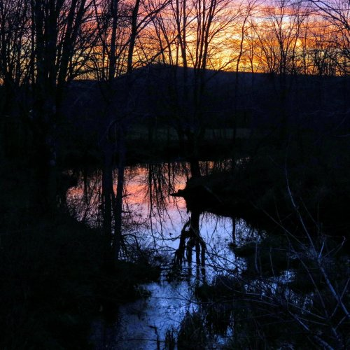 15. Stream at Sunset