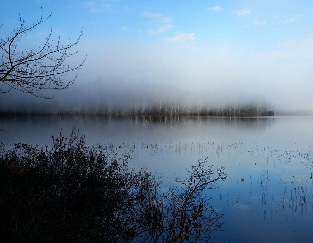 16. Low Mist