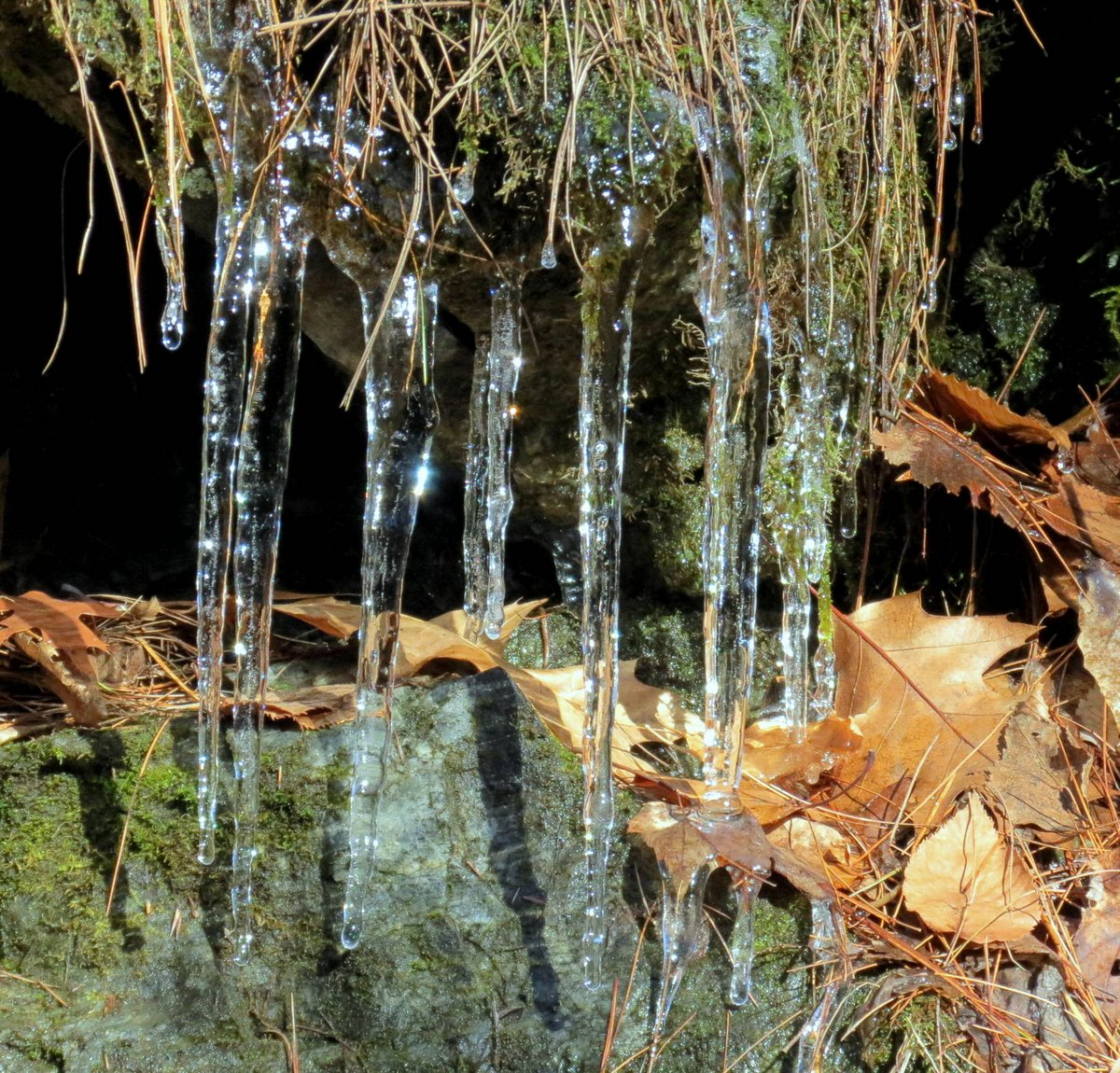 12. Icicles