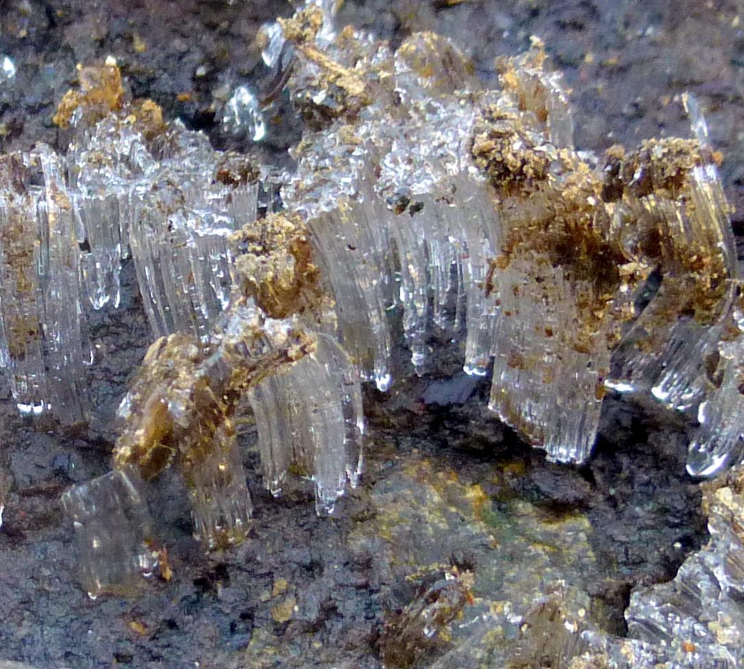13. Ice Needles