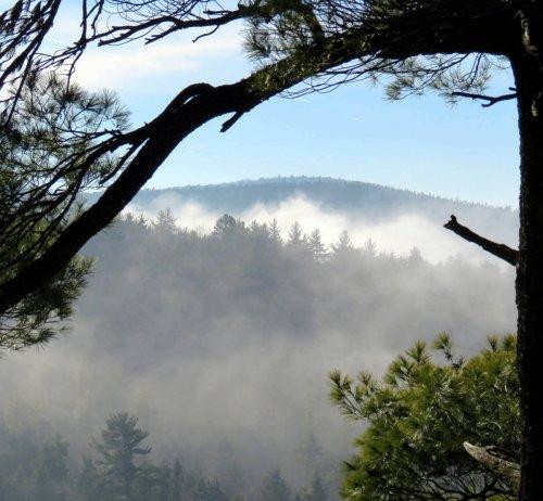 13. Mist