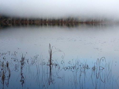 14. Half Moon Pond