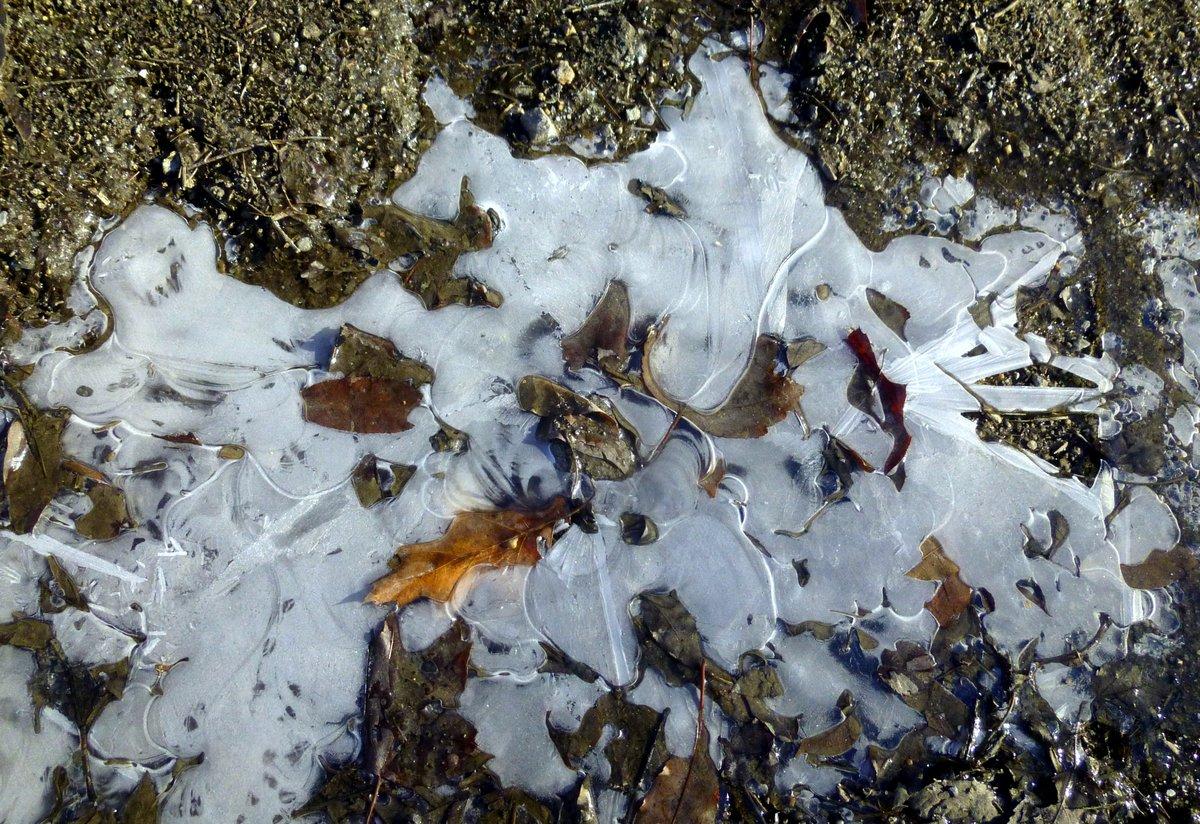 14. Puddle Ice