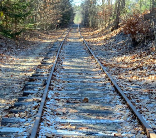 17. Tracks
