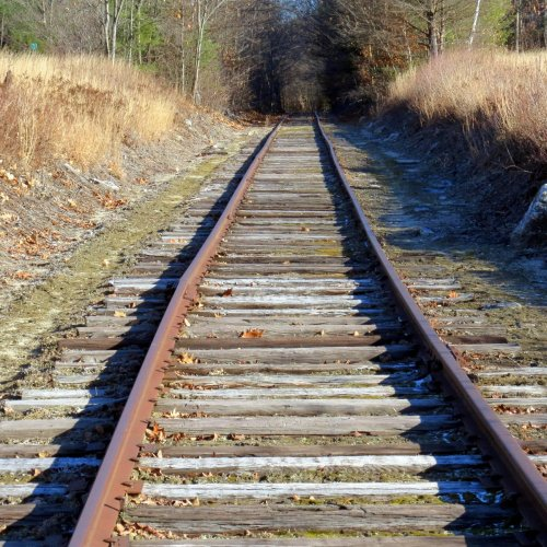 2. Tracks