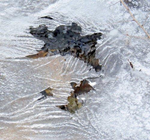 18. Stream Ice