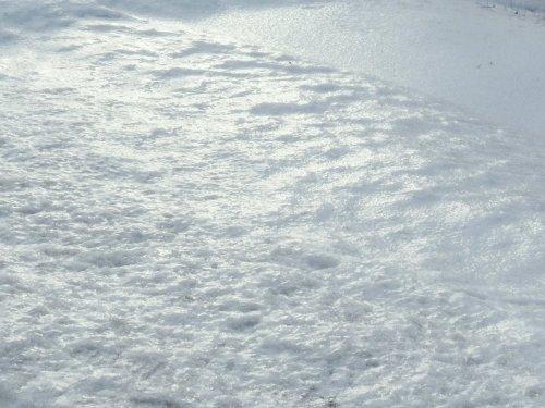 2. Icy Snow