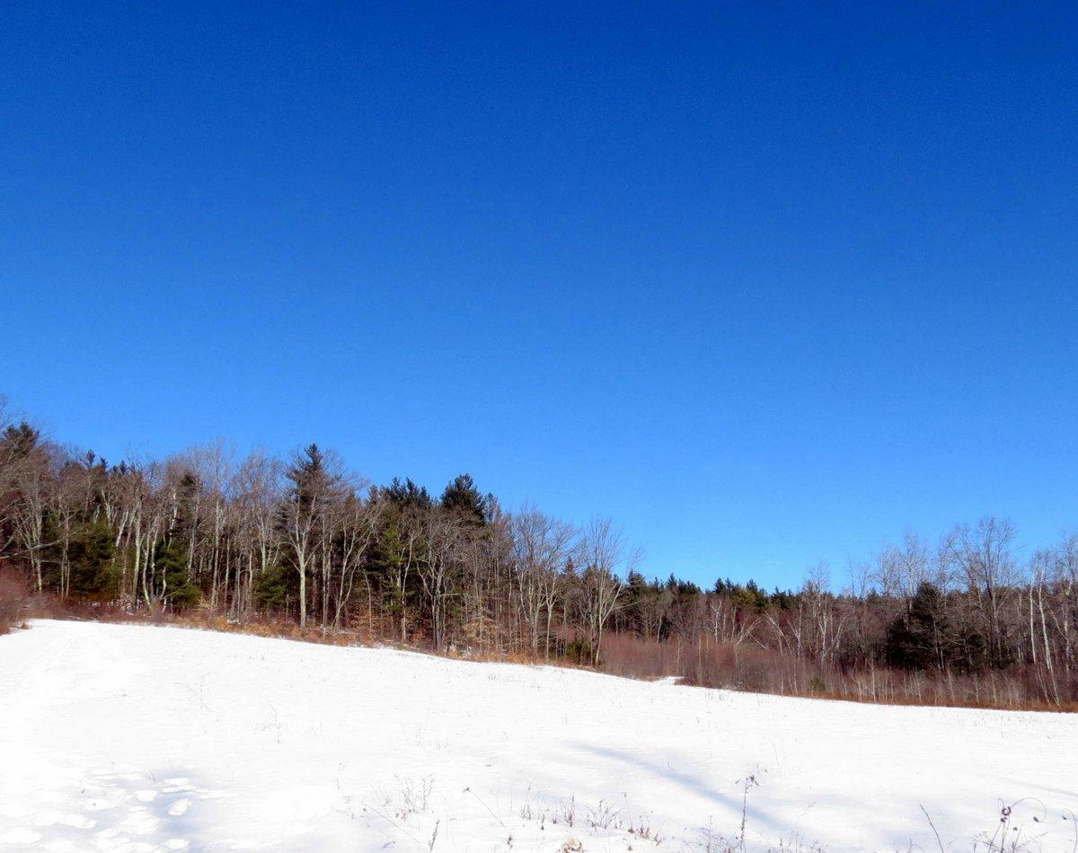 2. Meadow