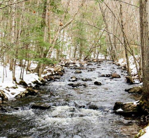 5. Beaver Brook
