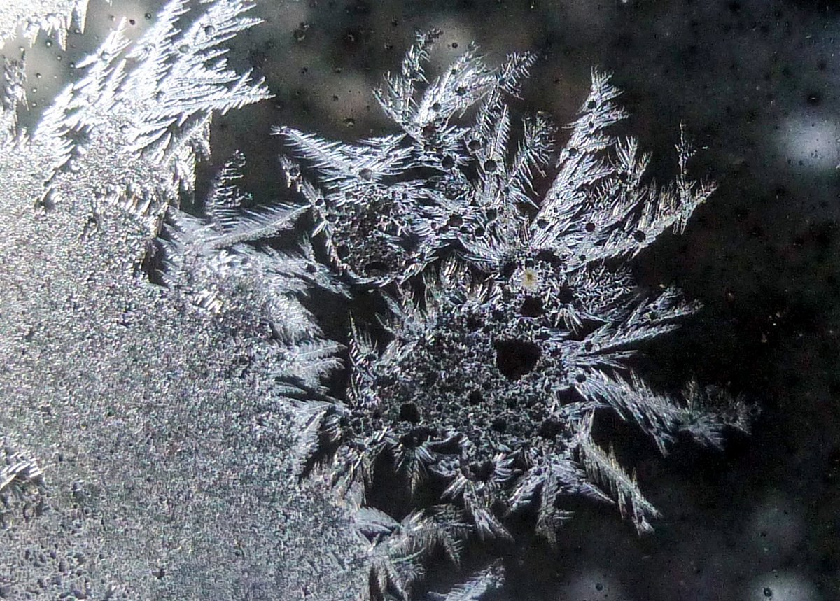 1. Frost Crystals