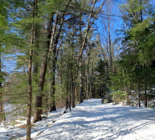 10. Trail