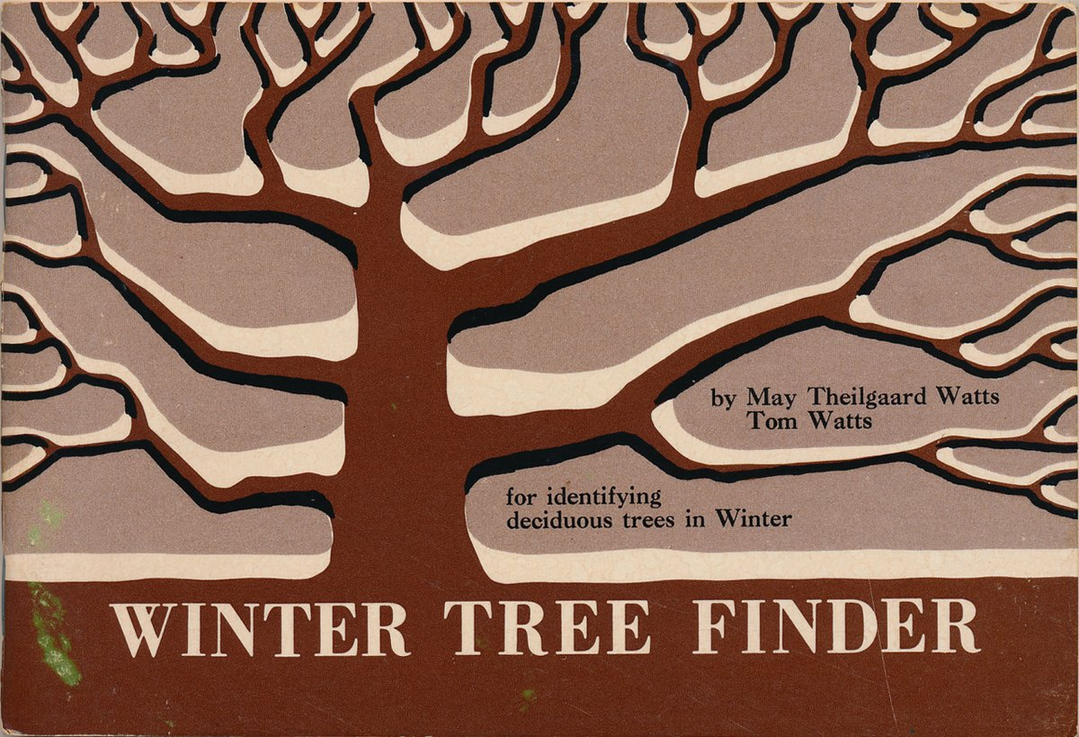 16. Winter Tree Finder