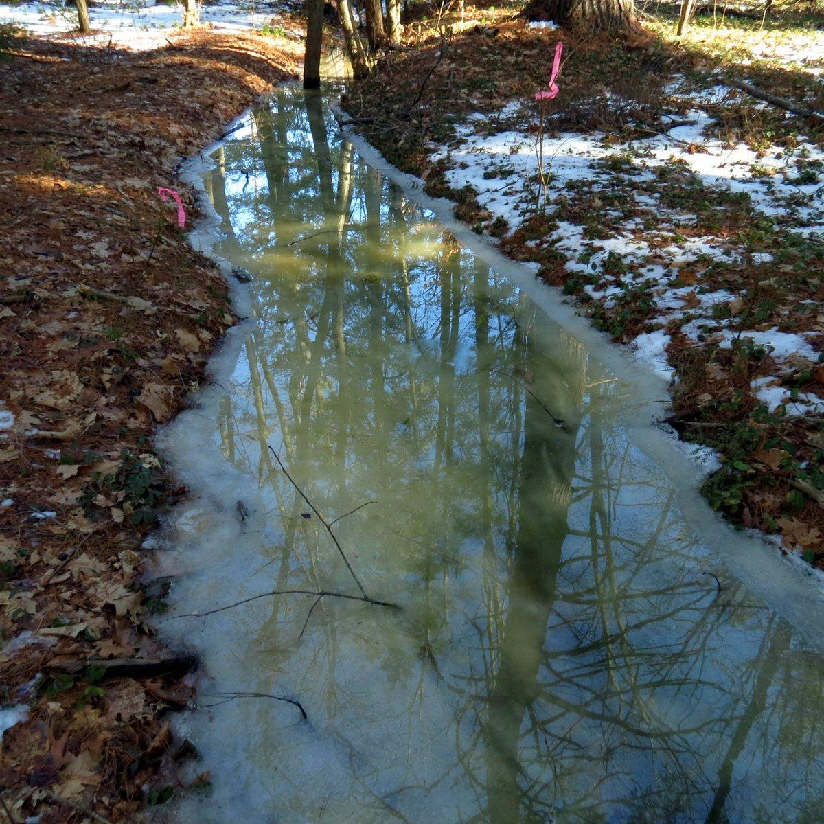 3. Frozen Stream