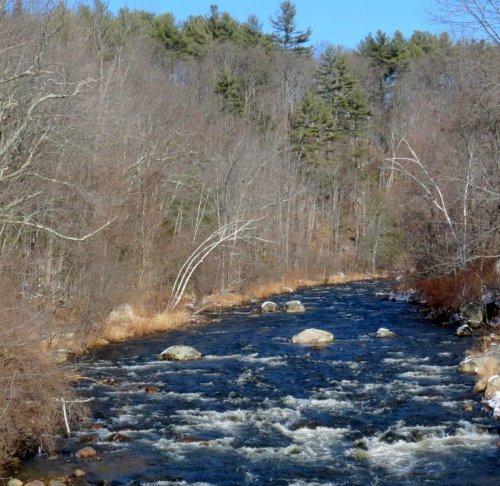 8. Branch River