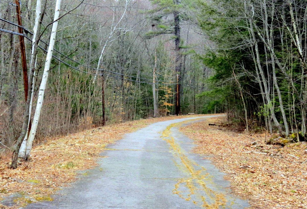 1. Abandoned Road