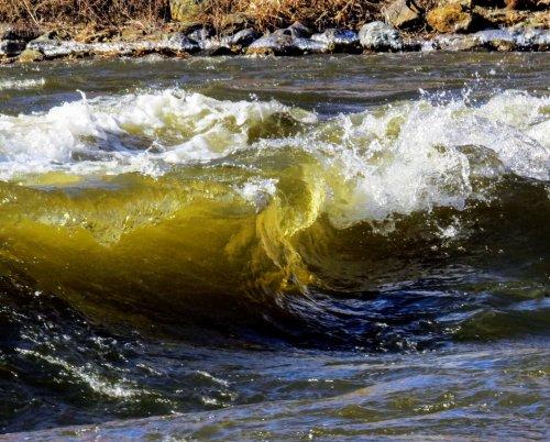 1. Ashuelot Wave