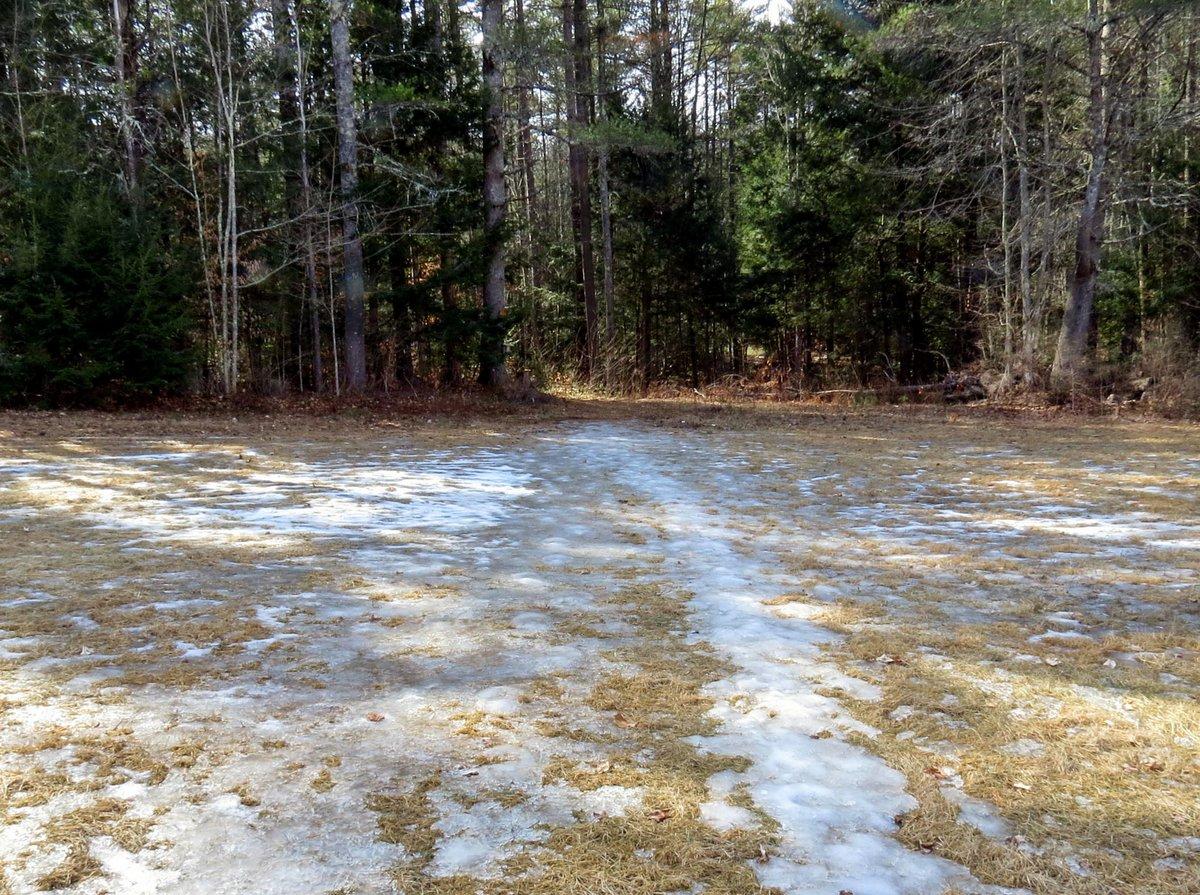 1. Ice in Field