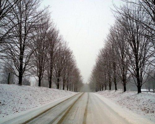 18. Snowy Road