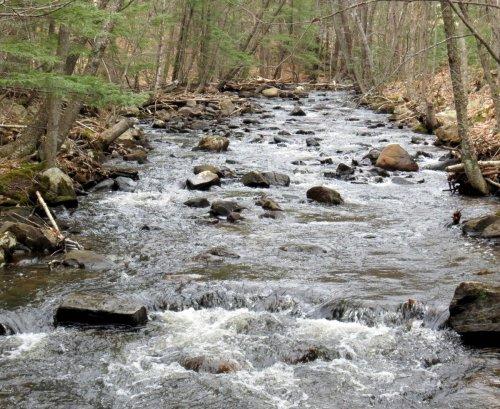 2. Beaver Brook