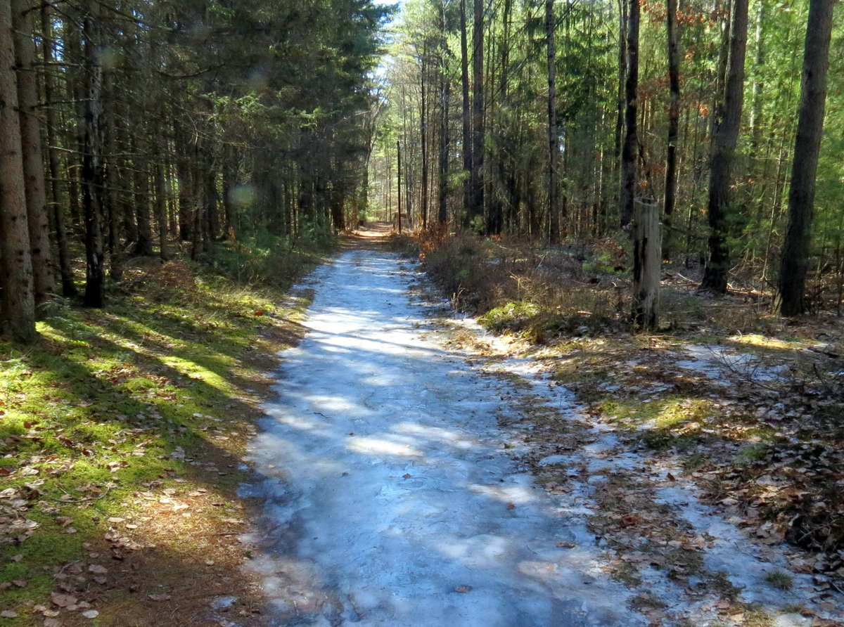 5. Icy Trail