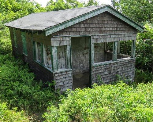 11. Cabin