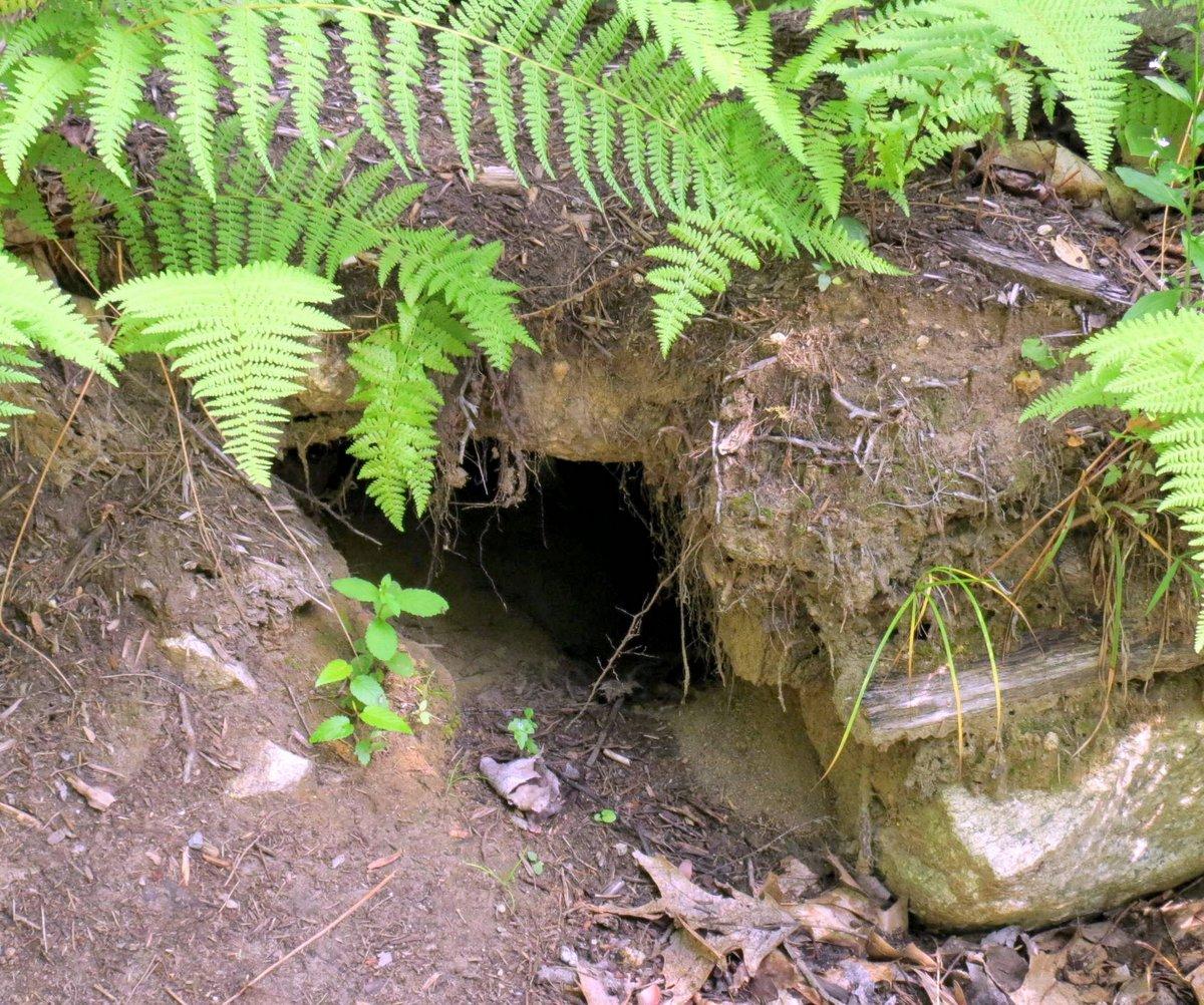 2. Hole Under Wall